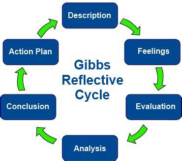 Reflective essay nursing student